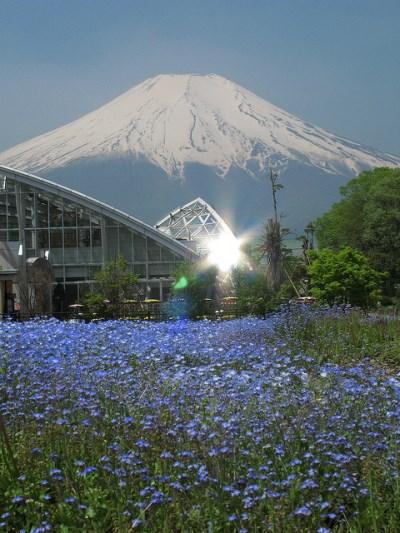 Rumah kaca di Kebun Bunga Hananomiyako