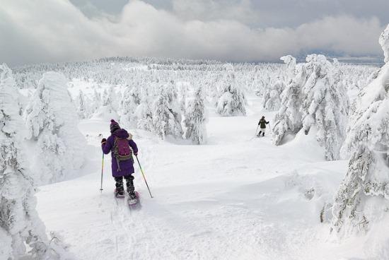 Seluncur es sambil menyusuri Gunung Zao