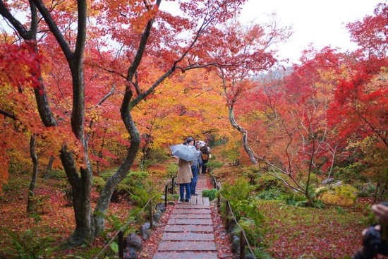 Suasana Kuil Hokyoin di daerah wisata Arashiyama