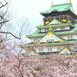 Suasana Osaka Castle Sakura 2020