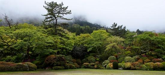 Taman Horaien diselubungi kabut di pagi hari