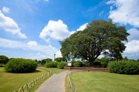 Taman Kairakuen di musim panas