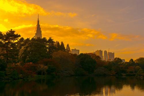 Taman Shinjuku Gyoen di senja hari