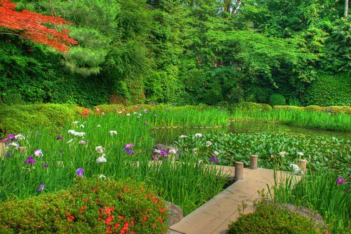 Taman di Kuil Heian Jingu