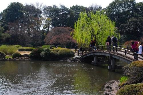 Taman tradisional Jepang di Taman Shinjuku Gyoen