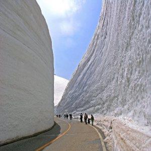 Tembok Salju di Tateyama