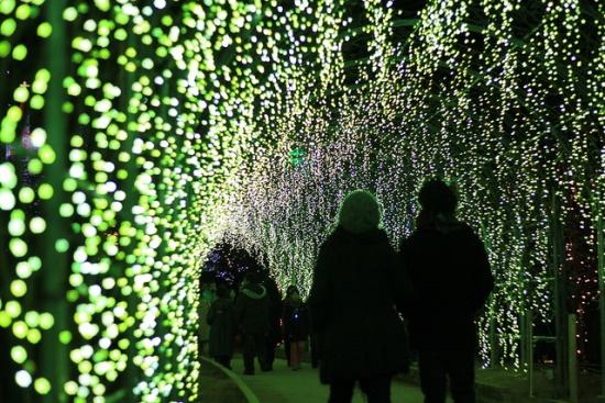 Terowongan bunga saat iluminasi musim dingin