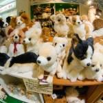 Toko Mainan Hakuhinkan: Robot hewan peliharaan