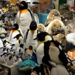 Toko Mainan Hakuhinkan: Boneka hewan-hewan di kutub