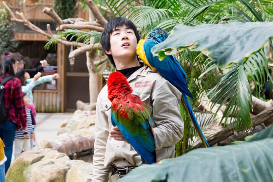 Tropical Rainforest di Kobe Animal Kingdom