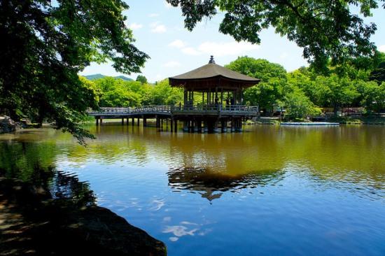 Ukimido Pavilion di Nara Park