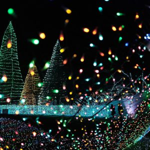 Yomiuri Land Jewellumination