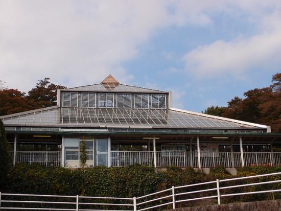 rumah kaca di taman gora park